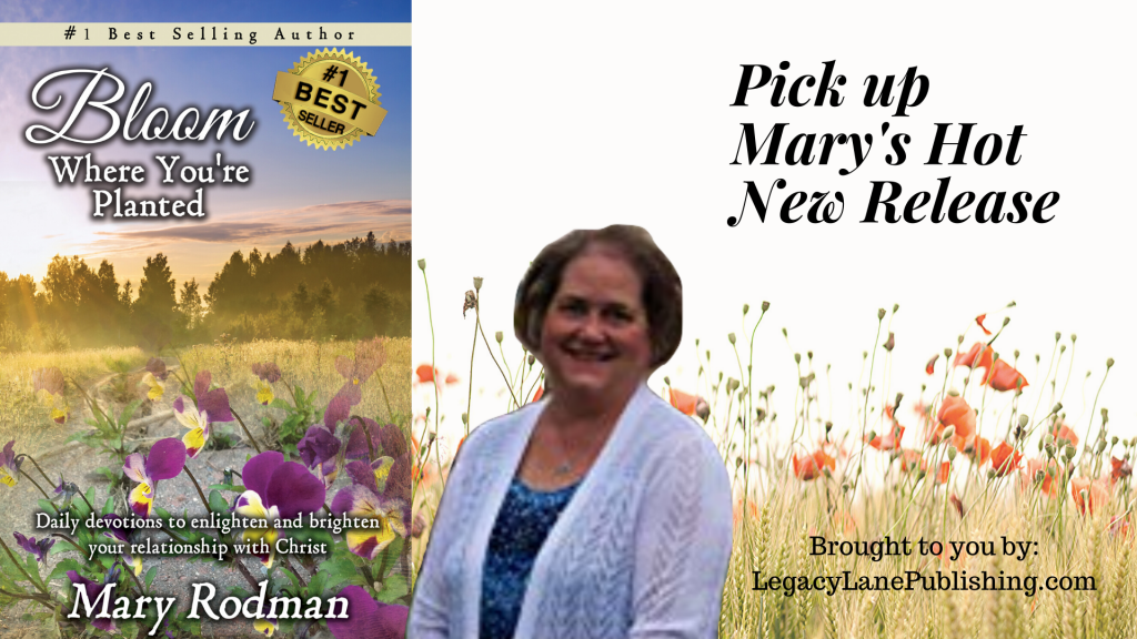 Mary Rodman Christian Author Devotional Series Releases as a #1 Best Seller